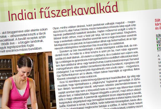Interjú a Vidék íze magazinban